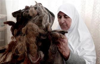 مسنة فلسطينية تحتفظ بكتل من شعرها منذ 67 عاما
