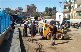 حملات نظافة وتجميل مكثفة في قرى ومدن سوهاج   صور