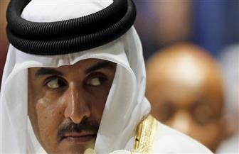 شاهد رد فعل أمير قطر بعد سماع صوت طائرة حربية | فيديو