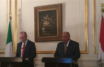 وزير الخارجية يبحث مع مسئول إيرلندي استئناف الطيران المباشر مع مصر