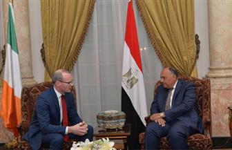 """شكري: ملف سد النهضة """"فني"""" وجار الترتيب لزيارة رئيس وزراء إثيوبيا لمصر"""