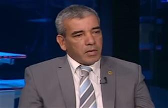 خبير يقدم روشتة تعزيز نجاح مصر في قيادة القارة خلال رئاسة الاتحاد الإفريقي