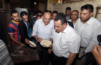 محافظ الإسكندرية يقوم بجولة موسعة بعزب وقرى المنتزة أول   صور