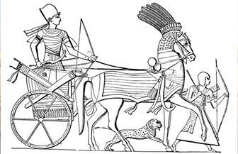 """""""اكتشافات أثرية من تاريخ مصر العسكري"""" في محاضرة بجامعة قناة السويس.. الإثنين"""