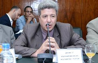 """رئيس """"التحول الوراثي"""" بمركز البحوث: كفر الشيخ نموذج لتطبيق الدولة الزراعية    صور"""