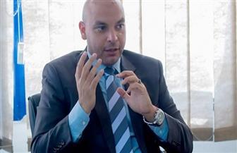"""""""حماة الوطن"""": الإمارات شريك مصر الدائم.. و""""مسافة السكة"""" لم يكن من فراغ"""