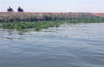 إزالة 5 حالات تعدِ على بحيرة المنزلة وأراض  زراعية و 3 منشآت بدمياط