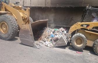محافظ الشرقية: وحدة التدخل البيئي السريع ترفع تراكمات القمامة في فاقوس