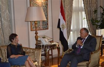 وزير الخارجية يستقبل المقررة الخاصة المعنية بالحق في السكن اللائق |صور