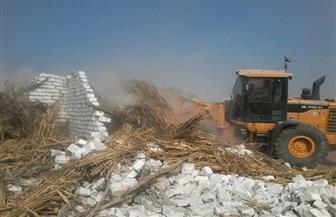 إزالة 15 حالة تعد على أراضي زراعية و4 على حرم السكة الحديد ببني سويف | صور