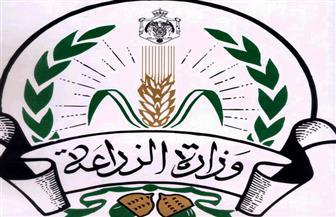 ننشر أسعار تقاوي محاصيل الموسم الشتوي كما أعلنتها وزارة الزراعة