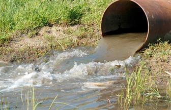 """استخدام مياه """"الصرف الصحي"""" في الري يحول الإنتاج الزراعي إلى سموم.. وخبراء: عدم تطهير الترع والمساقي السبب"""