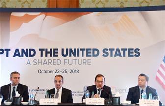 """اتفاق بين """"إنجاز مصر"""" و""""الوكالة الأمريكية"""" لاستخراج المشتقات البترولية"""