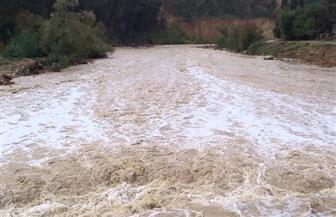 ارتفاع ضحايا سيول البحر الميت إلى 14 وفاة و22 إصابة