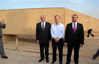 نائب الرئيس الصيني يزور معبد الكرنك بالأقصر ويلتقط الصور مع السائحين| صور