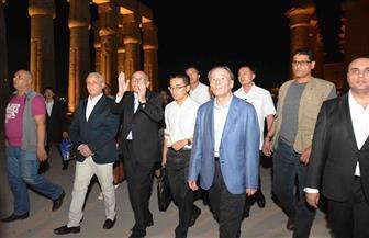 نائب الرئيس الصيني يزور معبد الأقصر| فيديو وصور