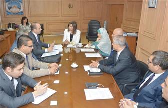 وزيرة الهجرة: نبدأ عملية حصر بيانات المصريين بالخارج من الجوازات والسجل المدني | صور