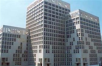 المالية: ٧٥٪ من إجمالي القوى العاملة بمصر تعمل في المشروعات الصغيرة