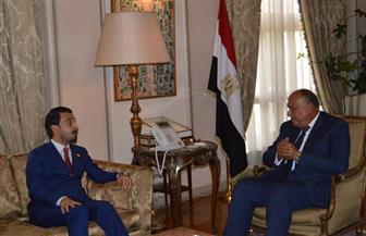 """شكري يؤكد لرئيس """"النواب العراقي"""" ثقة مصر في قدرة بغداد على تشكيل حكومة وحدة وطنية"""