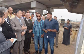 محافظ بني سويف يطالب بالدفع بمشروعات فى القطاعات الحيوية| صور