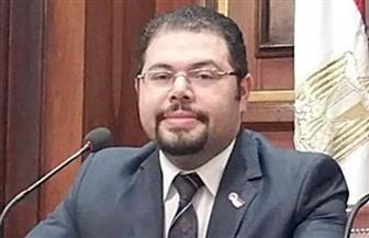 """عضو الهيئة العليا لـ""""مستقبل وطن"""": مصر بوابة ألمانيا بالقارة الإفريقية"""
