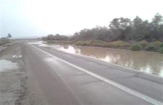 إعادة فتح جميع طرق مرسى علم بعد رفع آثار الأمطار | صور