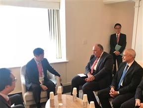 """وزير الخارجية يبحث مشروعات التعاون المشترك مع """"الجايكا"""" اليابانية"""