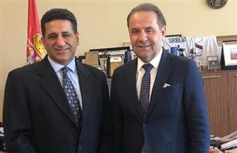 سفير مصر في بلجراد يبحث مع نائب رئيس وزراء صربيا سبل تعزيز التعاون بمجالات التجارة والسياحة والاتصالات