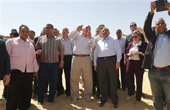 وزيرا التنمية المحلية والبيئة يتفقدان موقع حريق قرية الراشدة بالوادي الجديد| صور