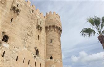 جولة سياحية لضيوف مهرجان الإسكندرية السينمائي | صور