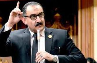 نائب برلمانى: مصر حققت العبور الأكبر إلى سيناء في عهد الرئيس السيسي