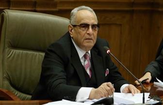 وكيل مجلس الشيوخ: مصر لا تقبل التدخل في شئونها والقضاء المصري مستقل| فيديو
