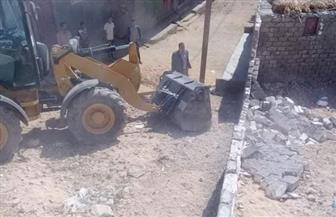 إزالة 50 حالة تعد على الأراضي الزراعية ومنافع النيل في سوهاج | صور