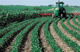بعد توجيهات الرئيس.. خبراء يضعون روشتة النهوض بالقطاع الزراعي