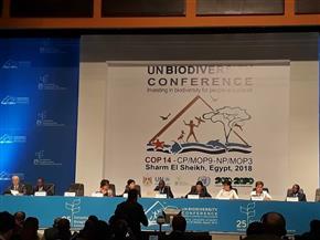 ياسمين فؤاد لمؤتمر وزراء البيئة الأفارقة: قارتنا تمتلك السواحل والمحميات الطبيعية الأعلى بالعالم | صور