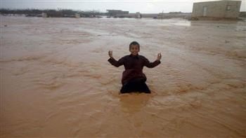 بعد هطول الأمطار.. توزيع 40 ألف شتلة زيتون و18 طن تقاوي شعير في غرب مطروح