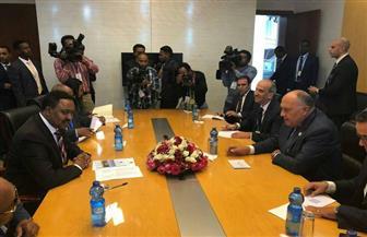 وزير الخارجية يلتقي نظيره الأثيوبي بأديس أبابا| صور