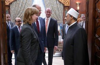 شيخ الأزهر: علاقة الشرق والغرب يجب أن تقوم على احترام ثقافة وقيم المجتمعات