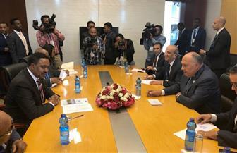 شكري يبحث تطورات مفاوضات سد النهضة والعلاقات الثنائية مع نظيره الإثيوبي   صور