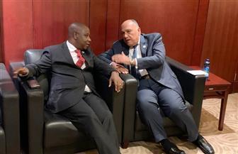 وزير الخارجية يؤكد دعم مصر لبوروندي في جميع المجالات | صورة
