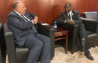 شكري يبحث مع وزير خارجية رواندا الإصلاح المؤسسي للاتحاد الإفريقي