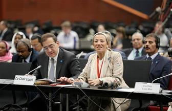 """ياسمين فؤاد: """"الأمم المتحدة الإنمائي"""" أكبر الممولين لمشروعات البيئة في مصر.. ومعظم التمويل يوجه للمحميات"""