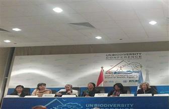 منصة نسائية تجمع مناضلات البيئة في أروقة مؤتمر الأطراف للتنوع البيولوجي بشرم الشيخ