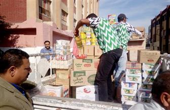 حملة نظافة ببيلا وقافلة محاربة الغلاء بالحامول | صور