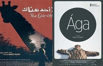 """على هامش """"القاهرة السينمائي"""".. 7 أفلام تتنافس في مسابقة أفلام أسبوع النقاد منهم فيلم مصري"""