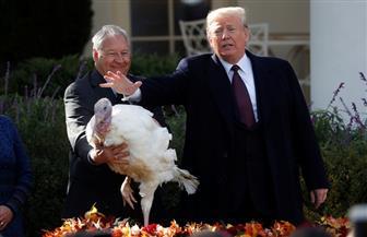 """تقليد أمريكي سنوي.. ترامب يعفو عن """"ديكين روميين"""" بمناسبة عيد الشكر"""