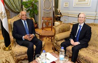 رئيس مجلس النواب يلتقي سفيري اليابان وأرمينيا بالقاهرة