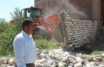 إزالة 23 حالة تعد على الأراضي الزراعية وأملاك السكة الحديد في سوهاج | صور