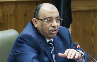 اليوم.. وزير التنمية المحلية يتفقد عددا من المشروعات بالفيوم