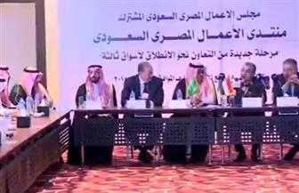 محمد شاكر: الباب مفتوح لمن يرغب في إنشاء محطات كهرباء في مصر